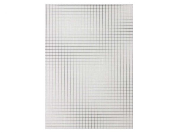 10 Notizblöcke DIN A5, 50 Blatt, kariert, ohne Deckblatt